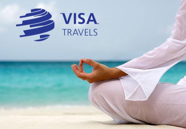 Логотип виза